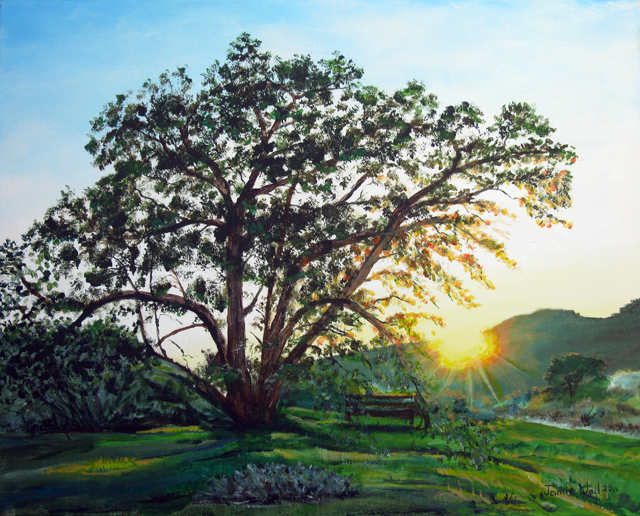 Oak Tree and Bench, Sunset, Acrylic Water Based Painting