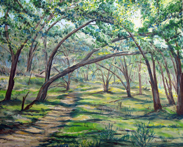 Oaks in Wills Canyon<br> Acrylic 
